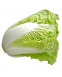Chinese Cabbage Seeds